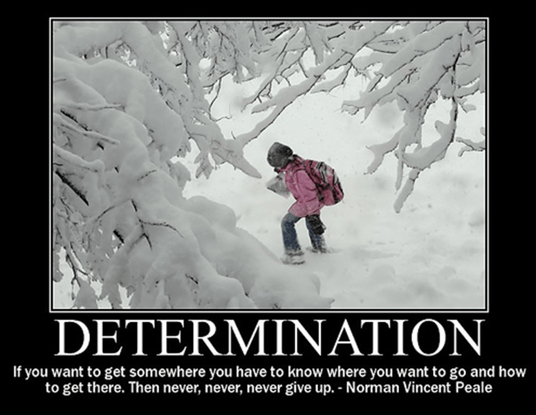 Determination: Firmness of Purpose