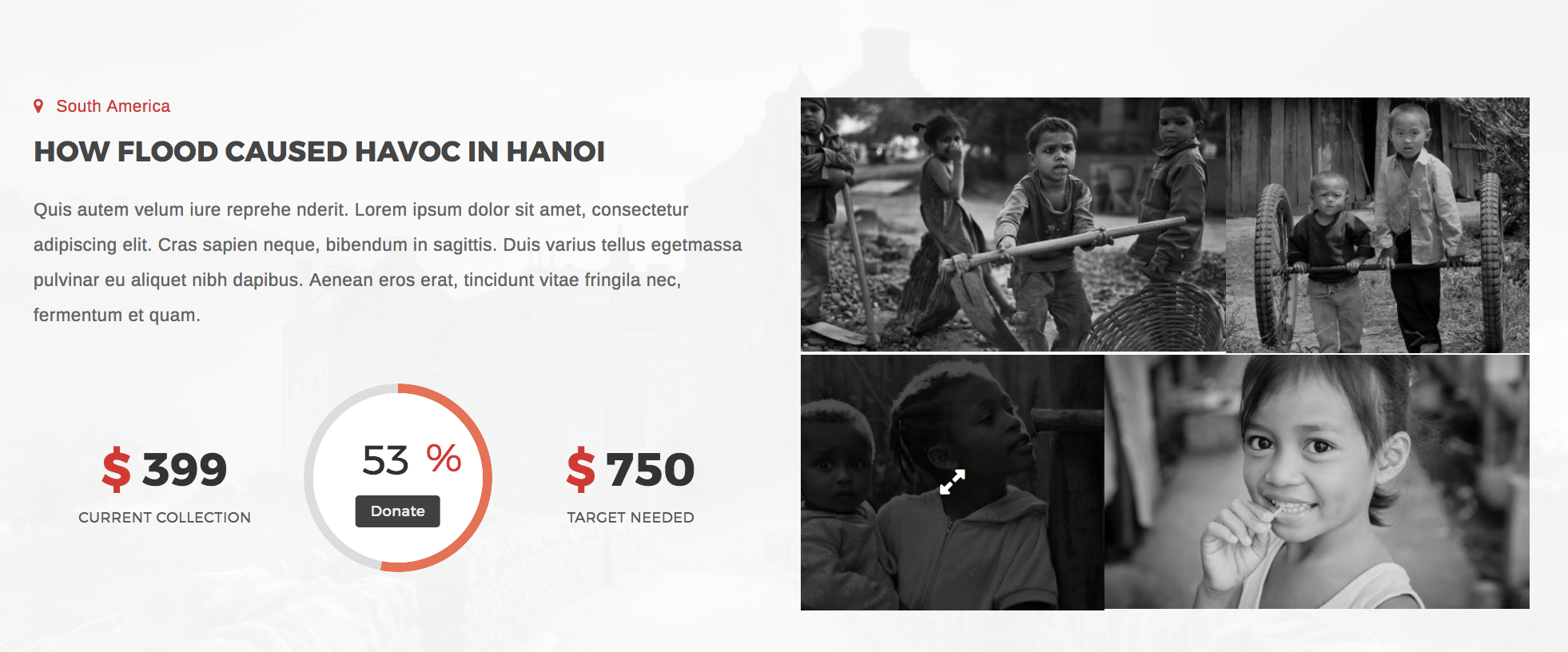 Lifeline 2 - Nonprofit WordPress Theme