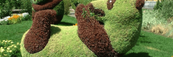 Cool Gardening Photo Collection