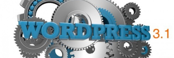 WordPress 3.1 Process, Schedule and Scope