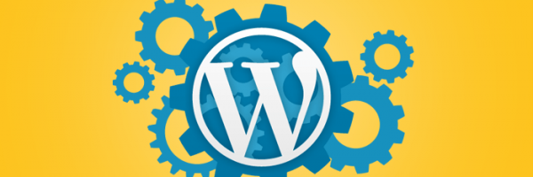 Top Must Have WordPress Plugins for All New Novice Website Owners