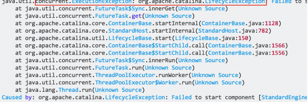 java.util.concurrent.ExecutionException: org.apache.catalina.LifecycleException?