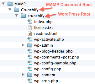 MAMP Document Root and WordPress Root
