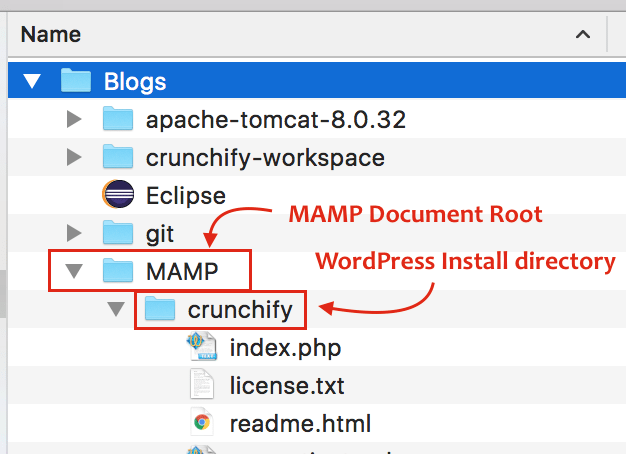 Setup WordPress with MAMP on Mac - Correct folder structure