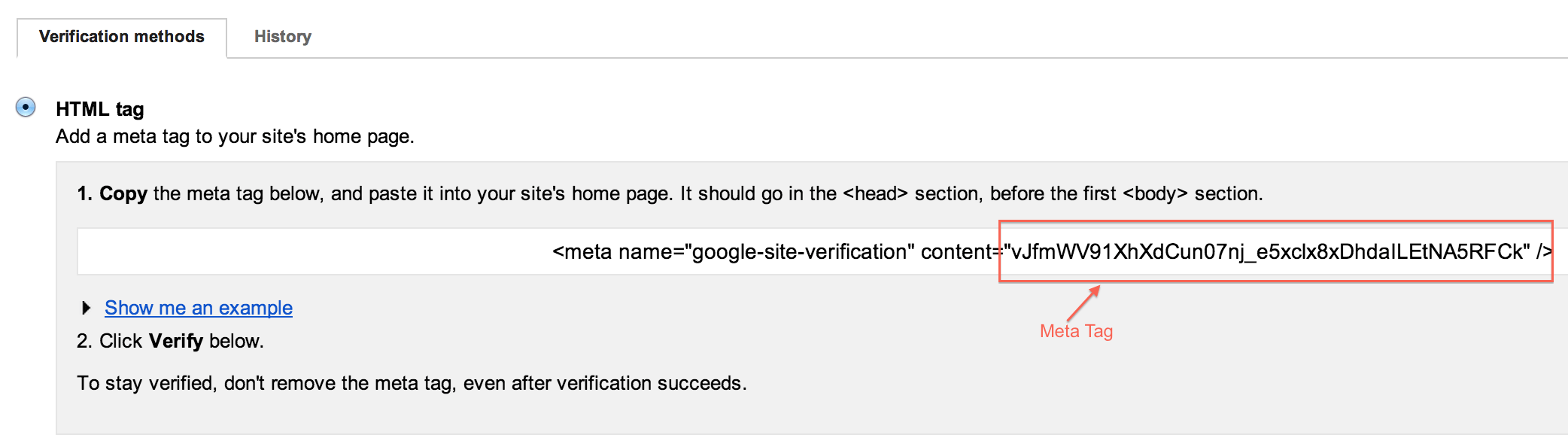 Google Verification Meta Tag - All in One Webmaster