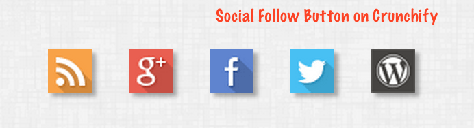 Social Follow Button on Crunchify