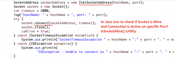 In Java how to check if Socket is Alive, Connection is Active on specific Port? isSocketAlive() Utility