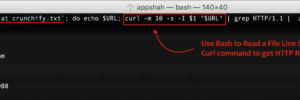 Use Bash to Read a File Line by Line and Execute Curl command to get HTTP Result