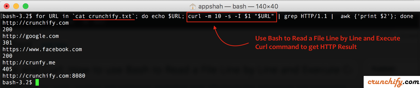 Use Bash To Read A File Line By And Execute Curl Command Get HTTP