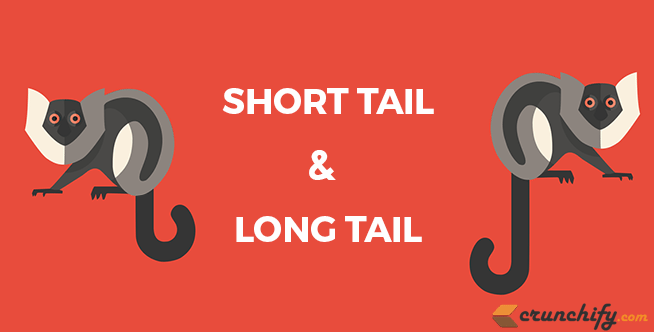 Short or Long Tail Keywords