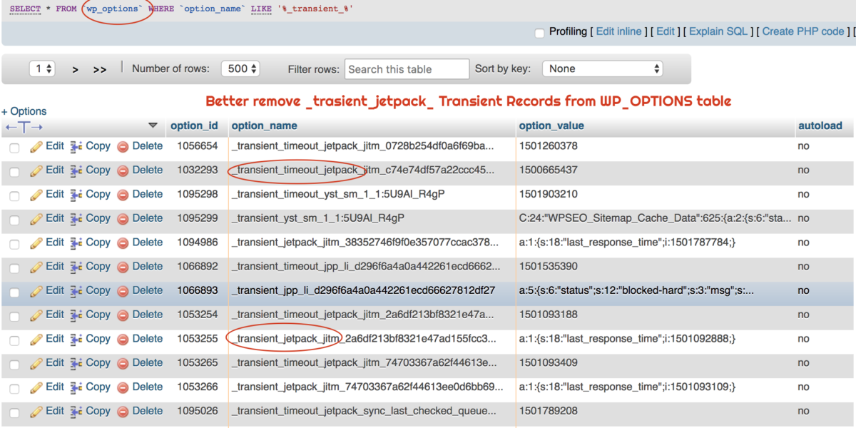 Better remove _trasient_jetpack_ thousands of Records from WordPress WP_OPTIONS table