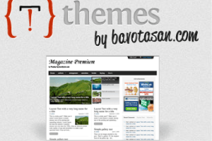 Magazine Premium WordPress Theme – No Comment Template on Page?