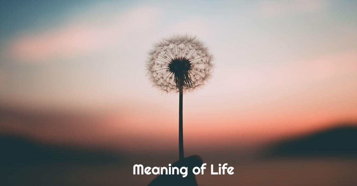 Meaning of Life - Crunchify Quote