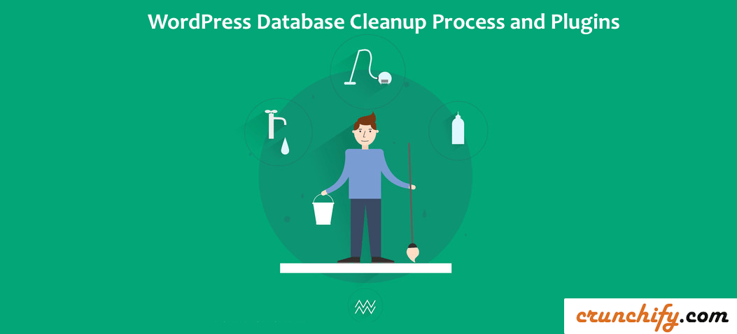 WordPress Database Cleanup Process and Plugins