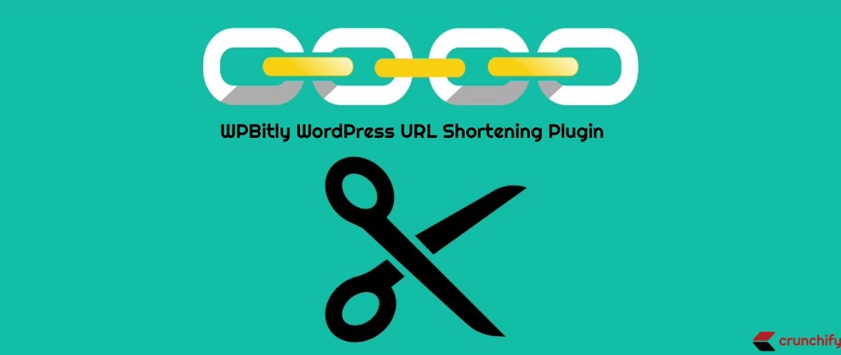 How to use WP-Bitly WordPress URL Shortening Plugin?