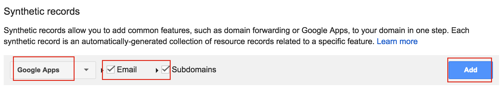 Google-Domains-Synthetic-Records