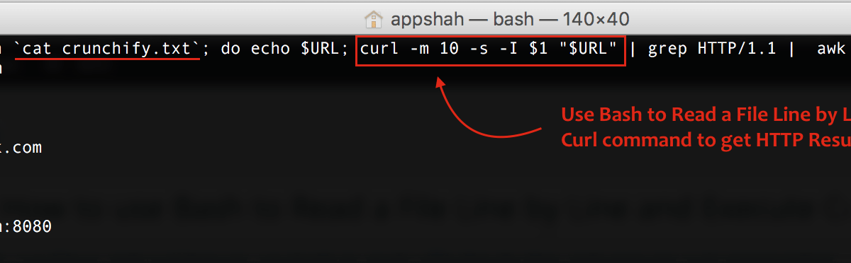 Linux and Curl: How to use Bash to Read a File Line by Line and Execute Curl command to get HTTP Response Code