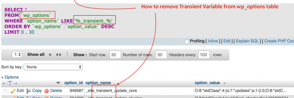 How to auto delete WordPress _transient_ Variables on Post Publish?