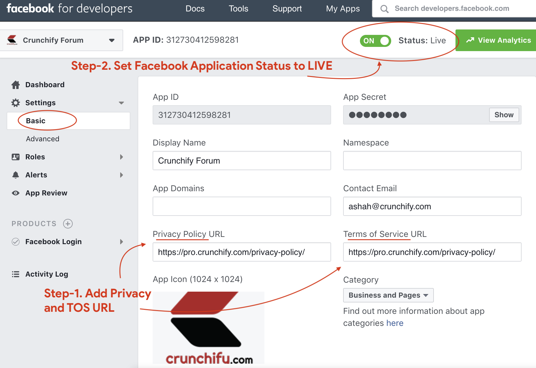 Make Facebook Application Status to LIVE