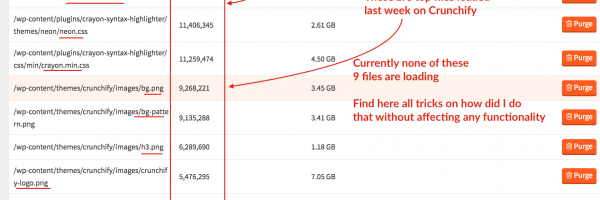 How to Stop Loading Unnecessary Files and Reducing Website's HTTP Requests – WordPress Optimization Tips