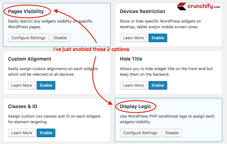 Widget Options enable only Pages Visibility and Dispaly Logic Options