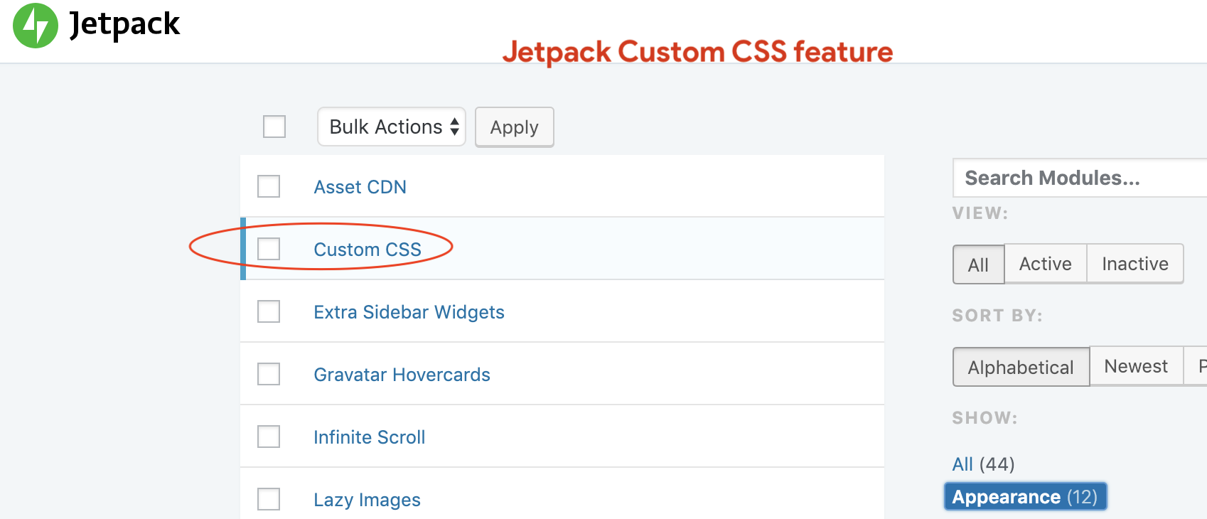 Enable Custom CSS Module in Jetpack