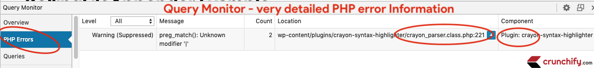 Query Monitor - very detailed PHP error Information