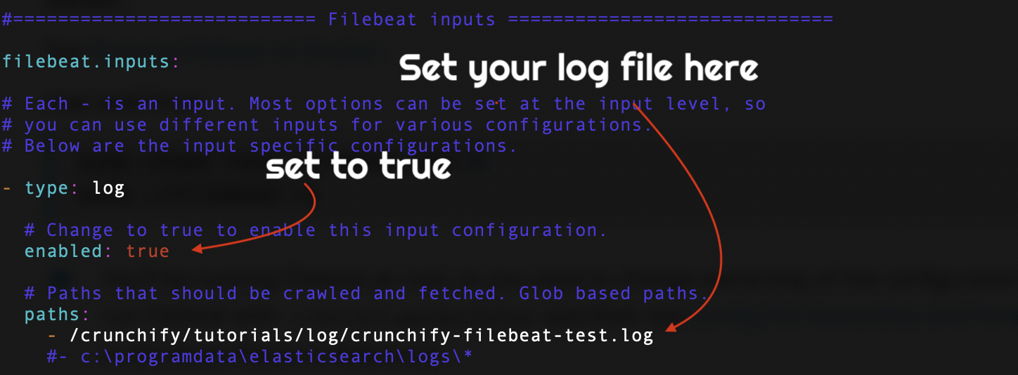 Open filebeat.yml file and setup your log file location