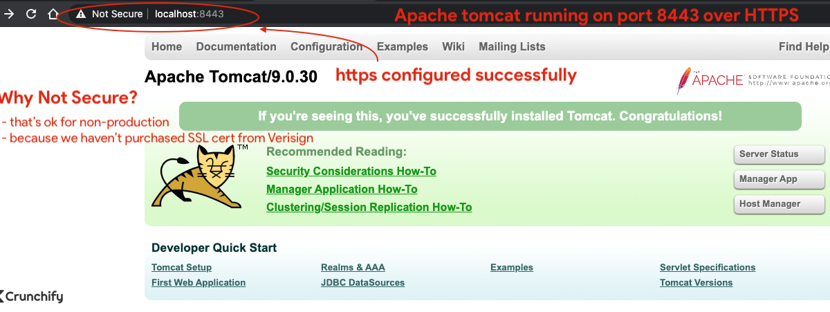 Apache tomcat running on port 8443 over HTTPS