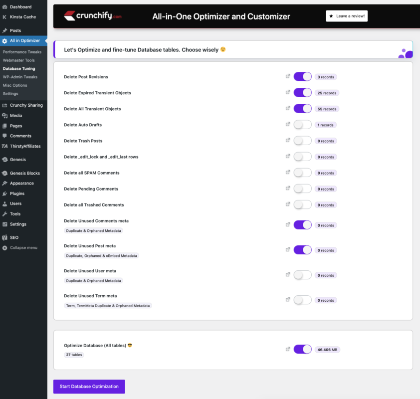 All-in-One Optimizer and Customizer WordPress Plugin Database tuning Options