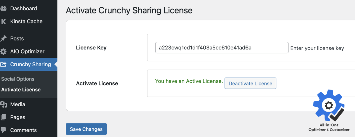 How to Activate Crunchy Sharing WordPress Plugin License? - All-in-One Optimizer and Customizer (aiooc)
